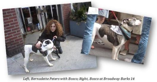 Left, Bernadette Peters with Bosco; Right, Bosco at Broadway Barks 14.