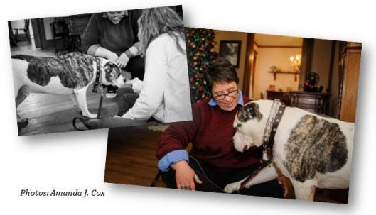 Cheri and Bosco. Photos by Amanda J. Cox.