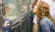 Bernadette Peters sings a duet with a small dog at Manhattan's ACC. Photo Credit: Matt Liptak